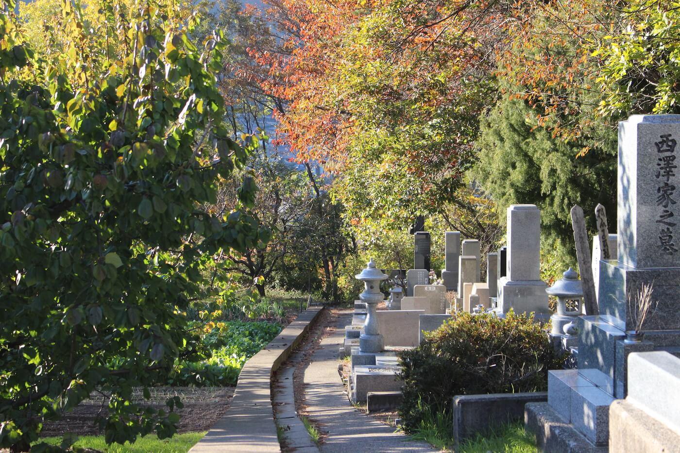 あんずの丘メモリアルパークの墓地内