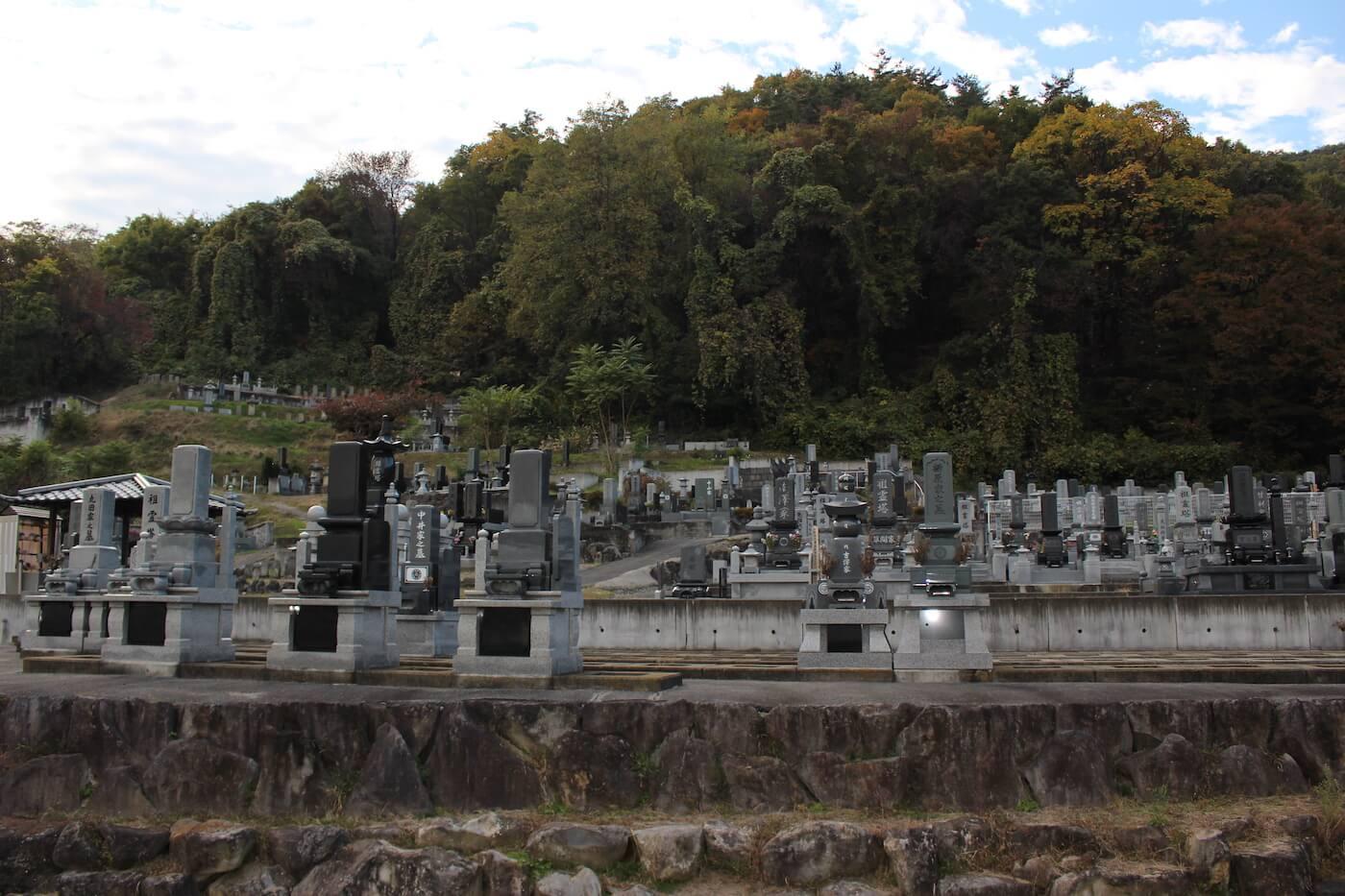 真蔵寺墓地からの眺望